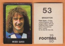Brighton Hove Albion Peter Sayer Wales